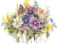 Purple and white flowers with butterfly