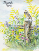 Bird on fencepost with yellow flowers