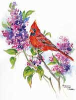 Cardinal on purple flowers
